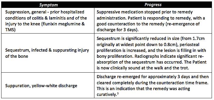JAHVMA - Sarah Stieg - Symptom progress chart Fig 7